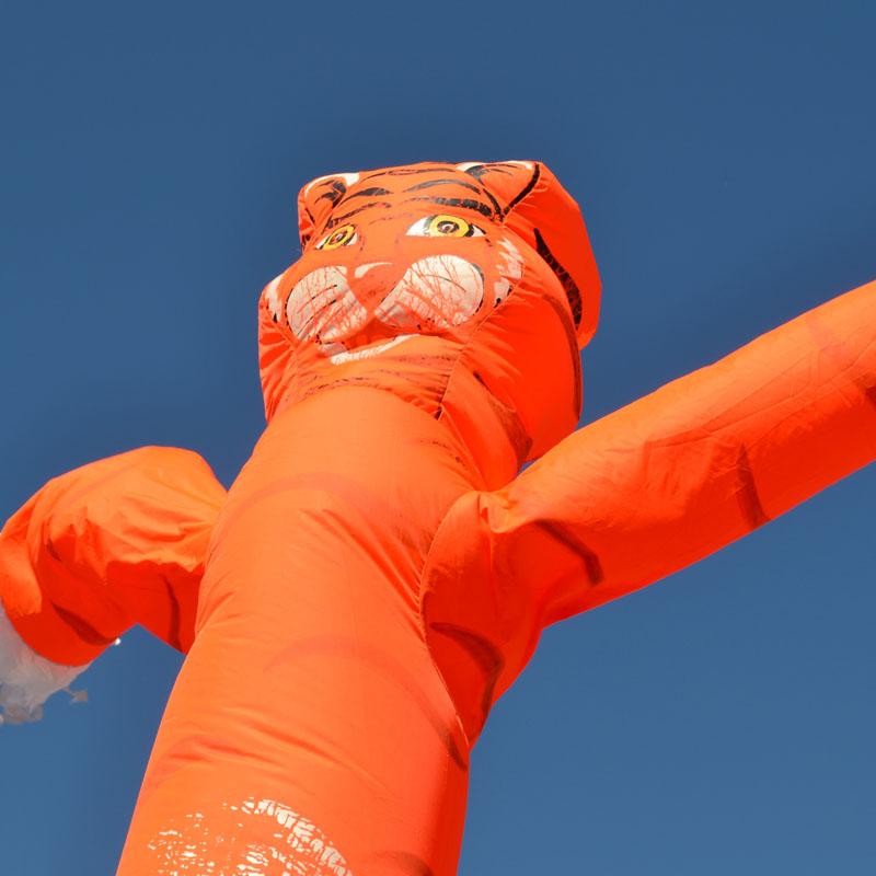 Skydancer Leeuw